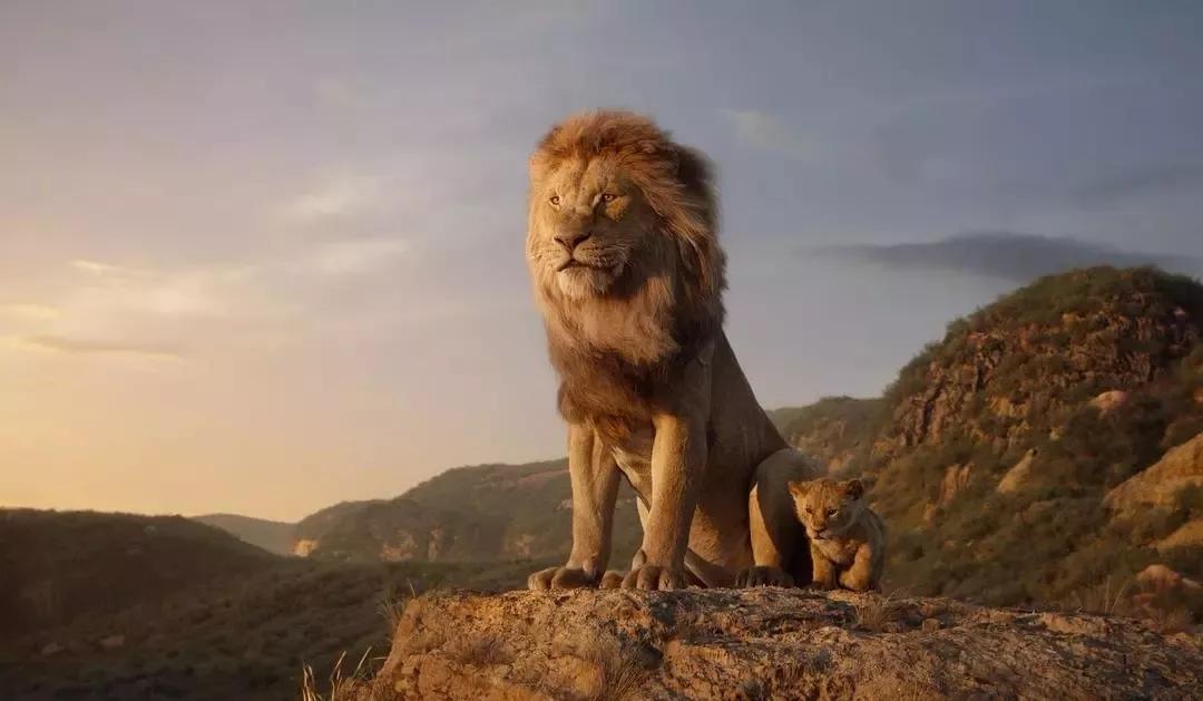 《狮子王》:你必须在生命的轮回中,找到自己的位置